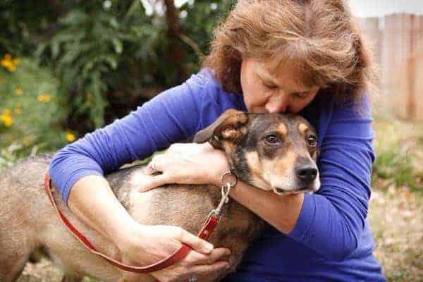 Hug Your Dog and Make Him Upset- Latest Study Revelation