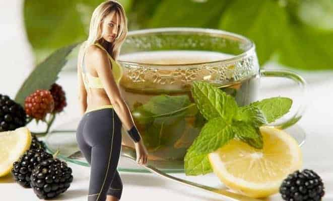 10 Best Herbal Solutions for Weight Loss