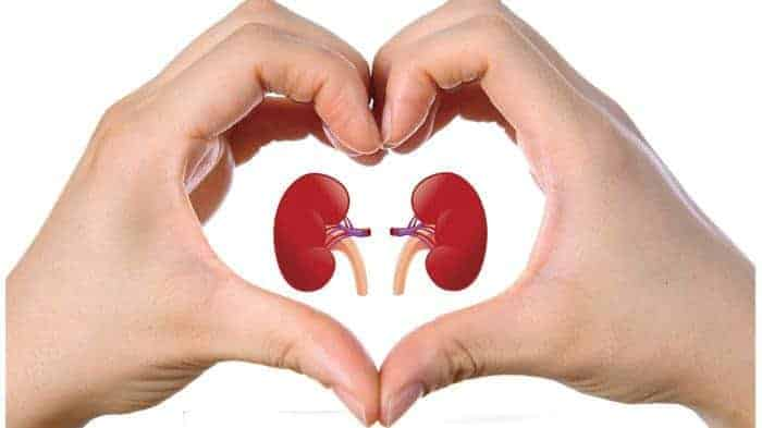 15 Super Herbs That Help Cleanse Your Kidneys