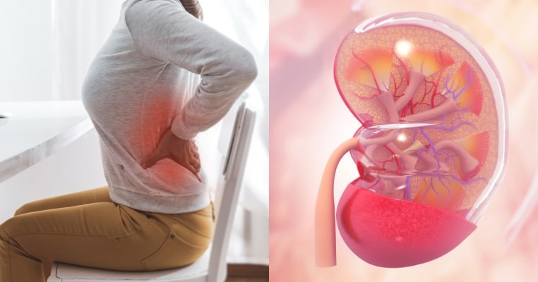 28 Things that are Actually Damaging the Kidneys